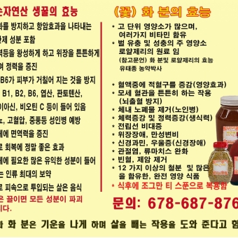 순 자연산 생꿀과 꽃 화분의 효능 - 사고·팔고 - 조지아주닷컴 : Thumbnail - 340x340 커버이미지